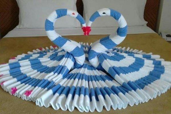 [Esculturas de toalhas chamam atenção em hotel de Goiânia]
