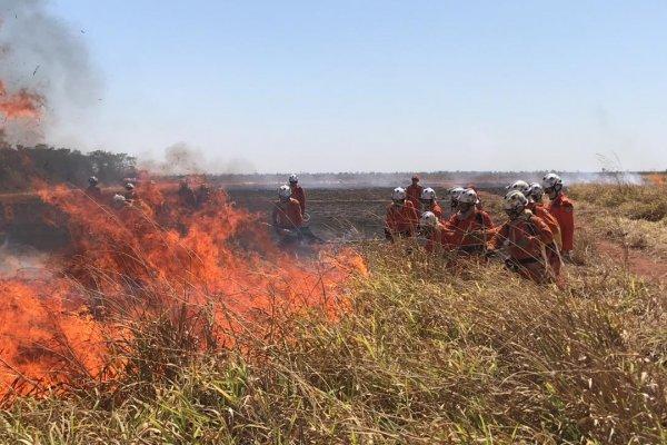 [Bombeiros realizam curso para prevenção de incêndios florestais em município baiano]