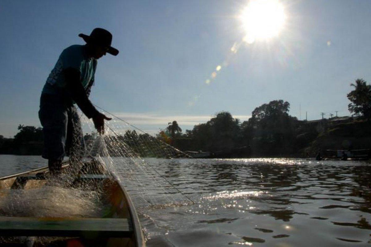 [Mais de 30 mil pescadores artesanais perdem a licença por causa de irregularidades]
