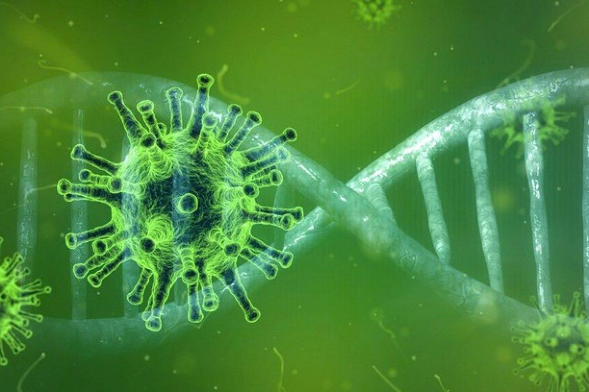 [Brasileiros possuem dois milhões de variantes genéticas inéditas, diz estudo]